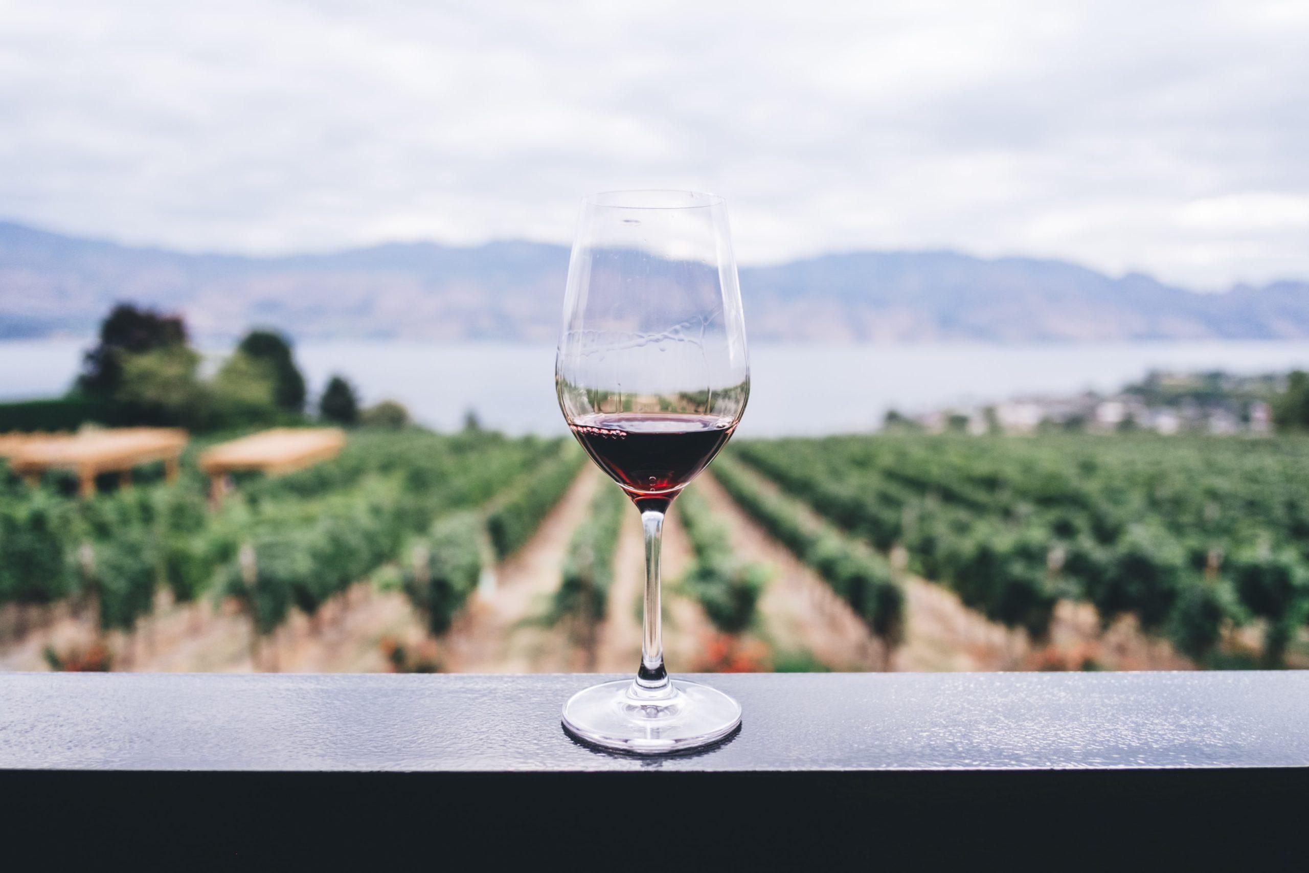 Lasillinen viiniä Resonoilla tilattuna